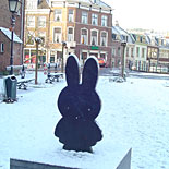 Miffy on Miffysquare